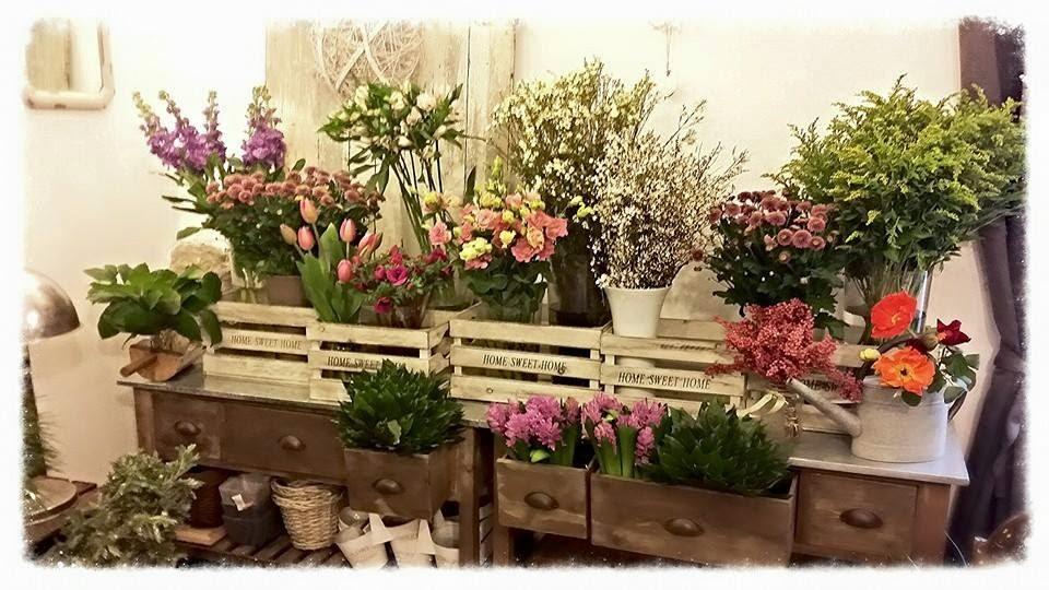 Ingrosso vasi per fioristi